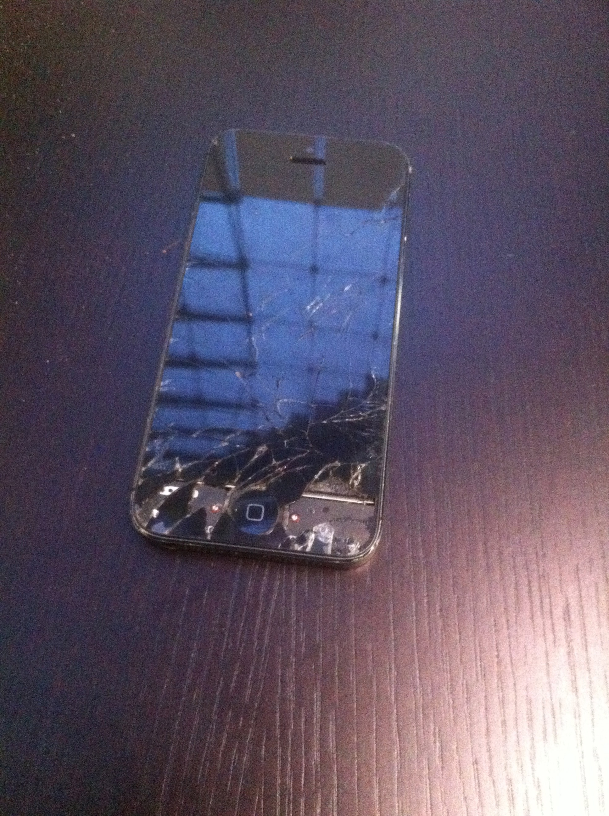 Broken iPhone 5 in Need of Some Serious Help