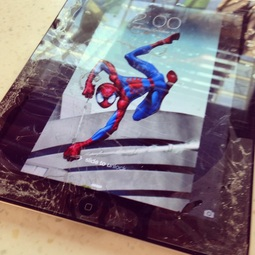 Spider man – Adding insult to injury