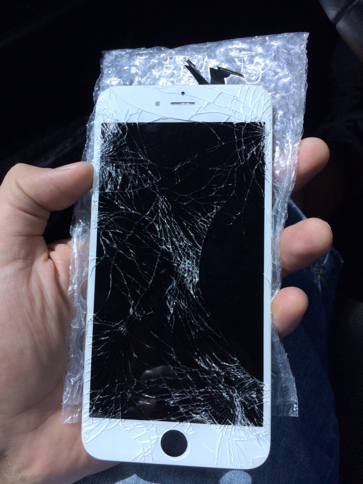 iPhone 6S Ruined = Life Over :(